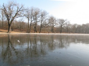 Eiszeit am Scheuermühlenteich